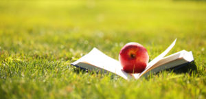 Back to School. Open Book and Apple on Green Grass.